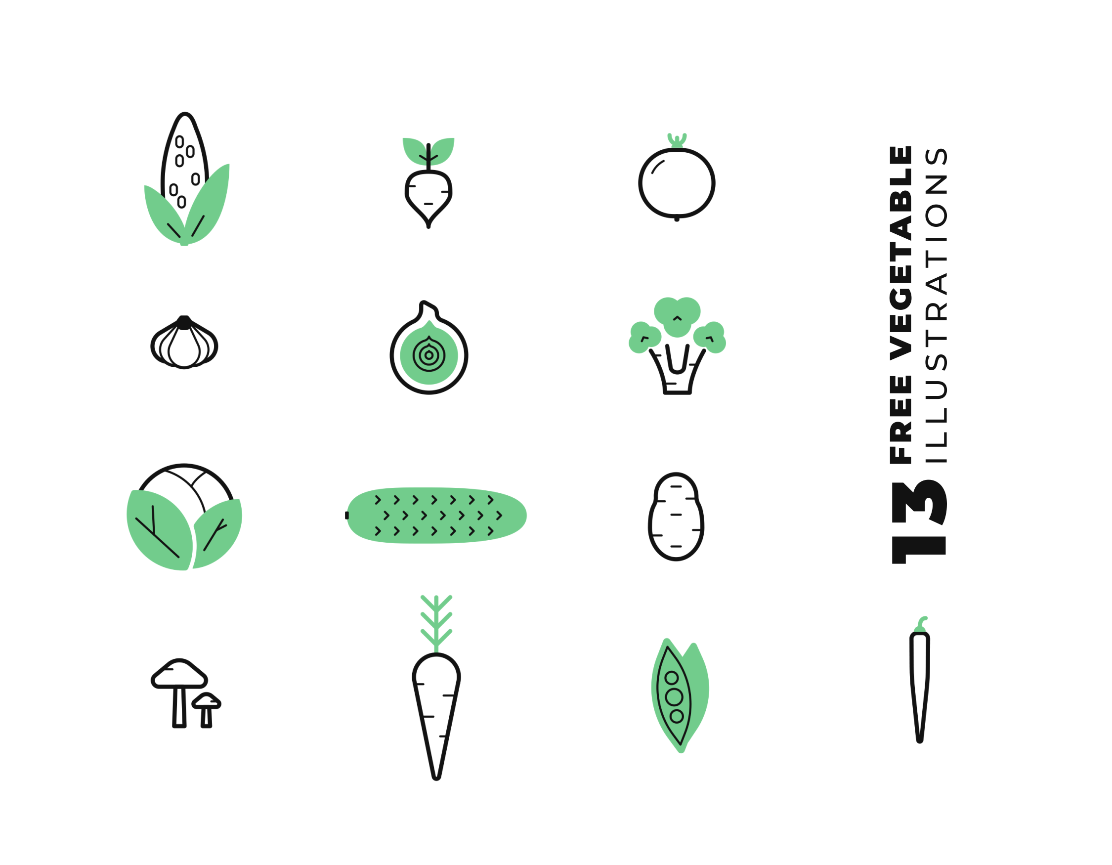 Veggie Illustration Animation Preview File